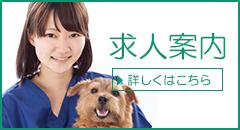 動物病院職員募集