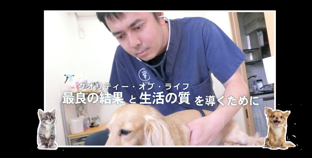 ユーノ動物病院は神奈川県綾瀬市にある犬猫専門の診療院です。